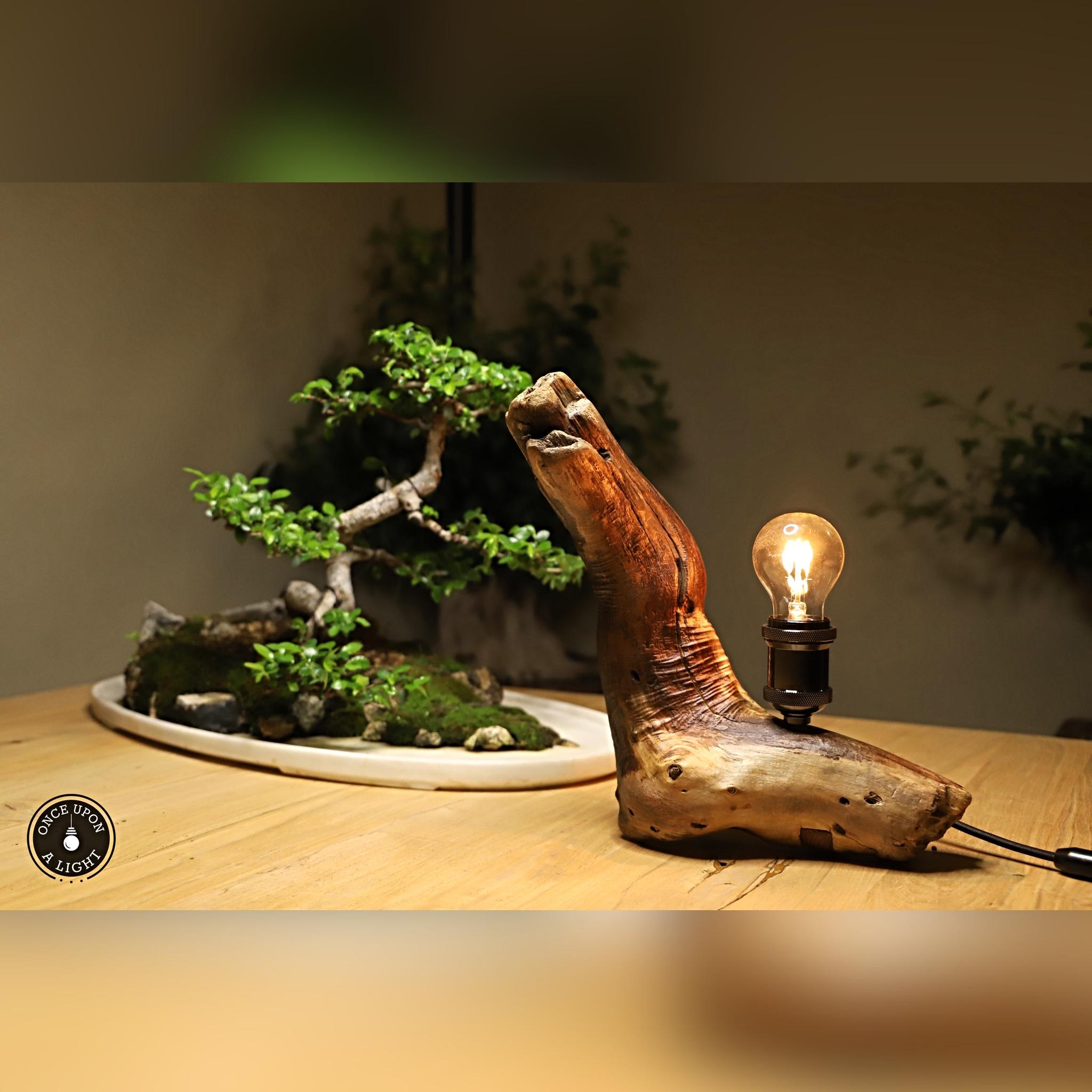 Lampe de table bois flotté avec ampoule led
